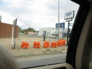 Bags of oranges for about $1 each.